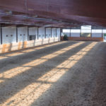 Considerations for Your Riding Arena - ProDesign - Design Builders Calgary